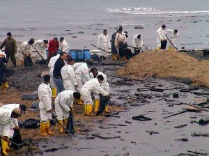 oil spill cleanup on shore