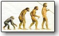 iconic ape-to-man progression
