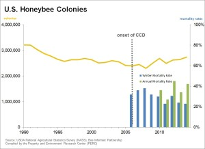 US honeybee colonies