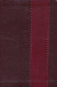 Front Cover of ESV Heritage Bible - TruTone